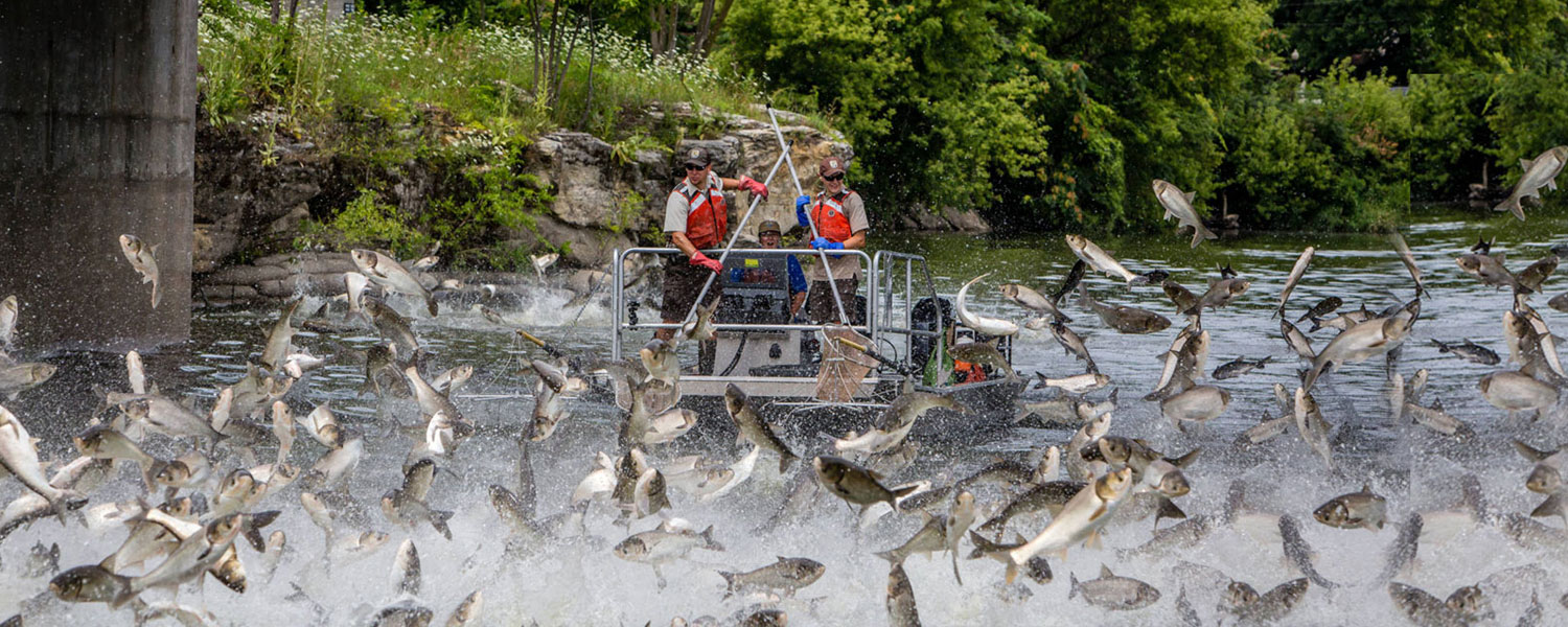 Conservation Connect - Fishing